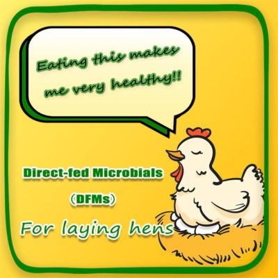 Direct-fed Microbials for Laying Hens