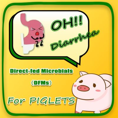 Direct-fed Microbials for Piglet